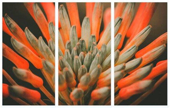 Cuadro tríptico de flores - Proyecto Cuadro